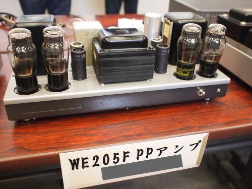 WE205F-PP.jpg